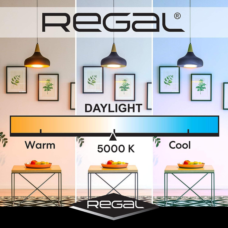 Best for most efficient LED Lights: Regal LED A19 Light Bulb