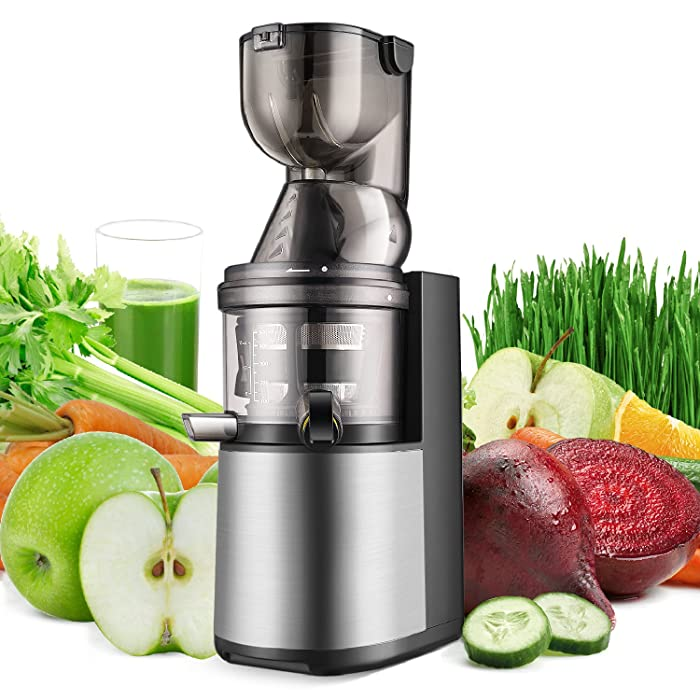 Top 10 Industrial Wheatgrass Juicer