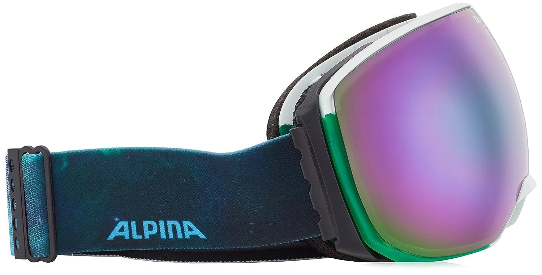 Occhiali da Sci Big Horn ALPINA