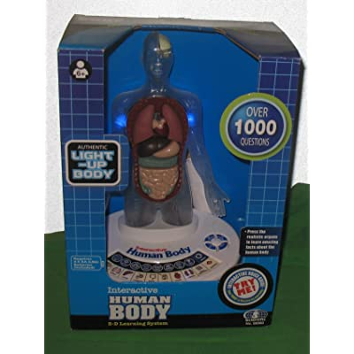 Classroom Interactive 3-D Human Body for Kids: Toys & Games
