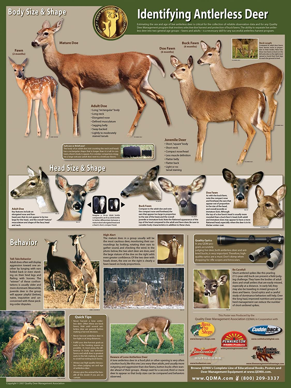 amazon com selective antlerless deer harvest poster prints