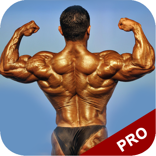How To Gain Muscle - Limited Edition