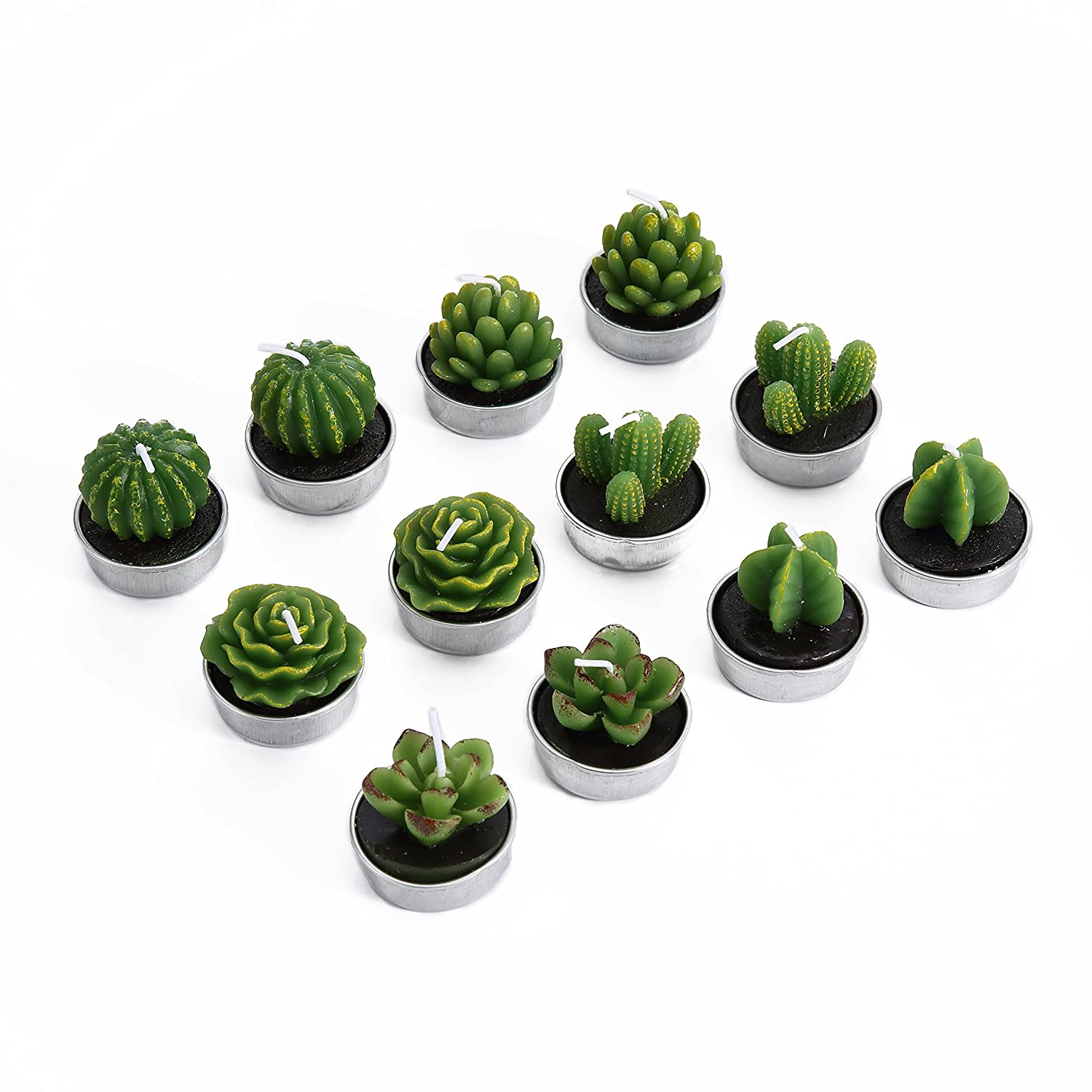 Amazon.com: Hahihi Decorative Scented Smokeless Cactus Tealight ...