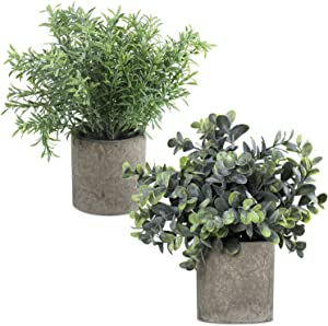 Fake Plants for Bathroom/Home Farmhouse decor, Artificial Faux Small Potted Plants for House Bedroom Kitchen Office Desk Indoor Decor (2 Pack)
