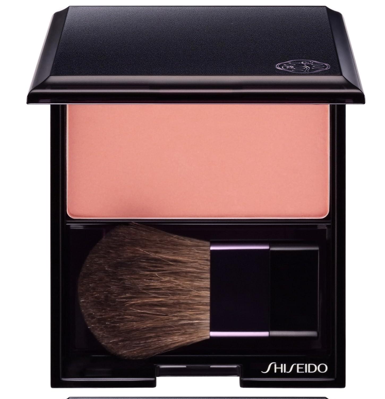 Shiseido 68017 Cipria Compatta 730852504073 SHI50407