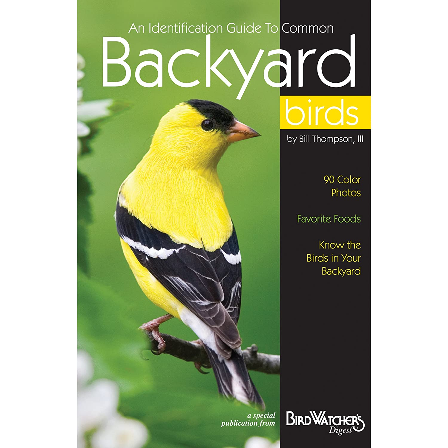 Identification Guide to Common Backyard Birds: A Special Publication from Bird Watcher's Digest Bird Watchers Digest Press 345 IF-HSES-BPM0 Nature/Ecology