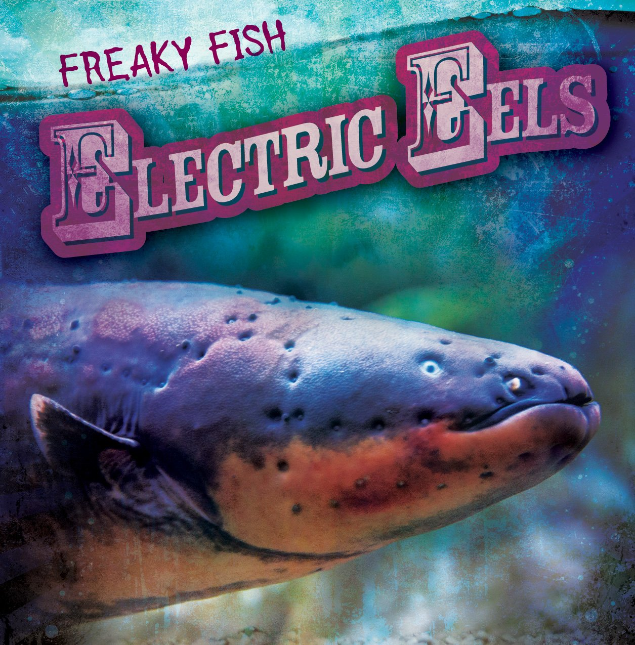 Buy Electric Eels (Freaky Fish) Book Online at Low Prices in India ...