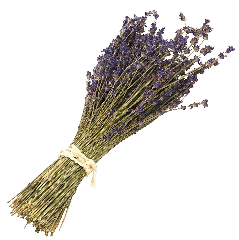 Missblue Lavender Bundle-Air Real Natural Dried Lavender Bundles,Freshly Harvested Royal Velvet Lavender Bundles for DIY Home and Party Wedding Decor (Purple) by Missblue