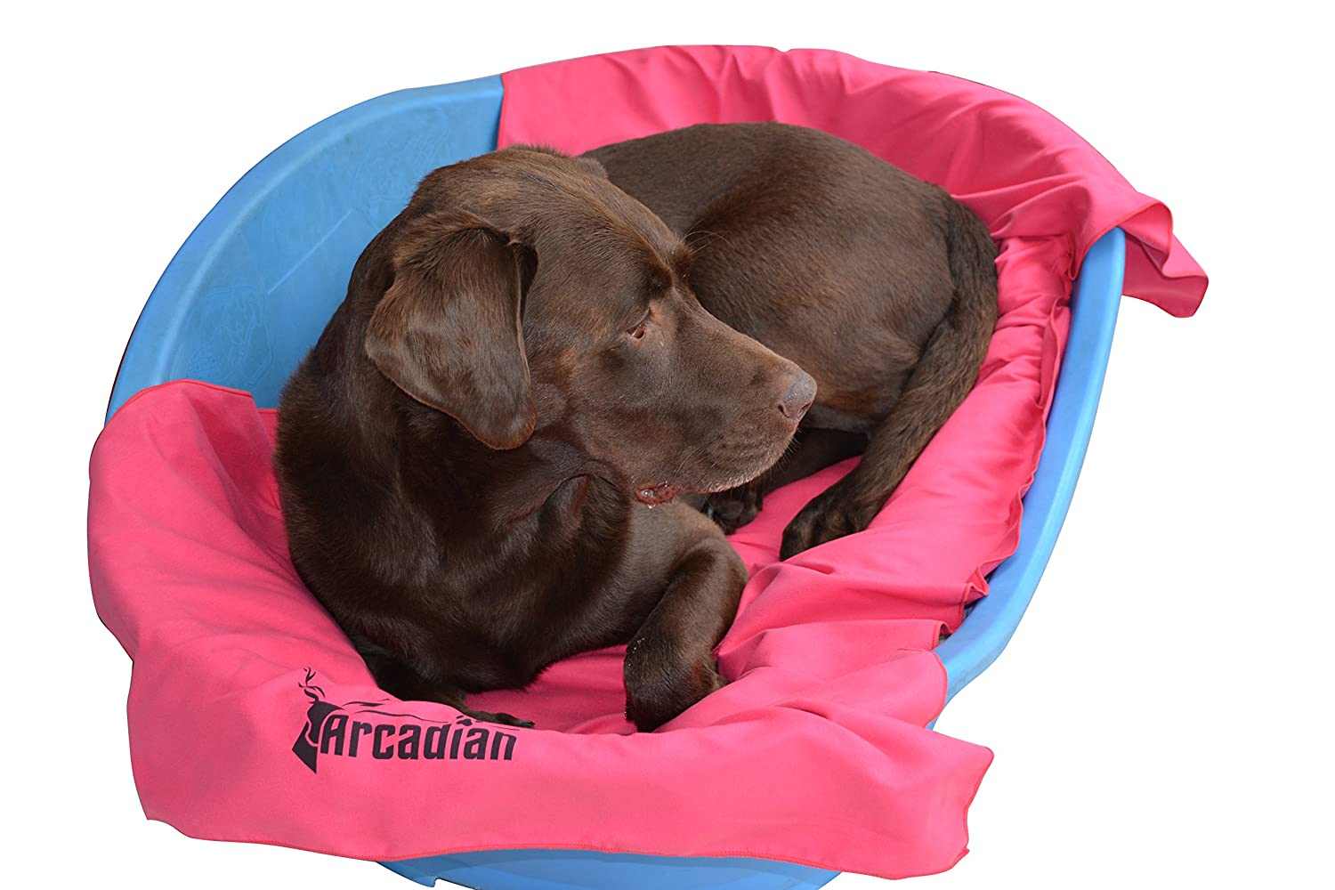 Orange and Pink These vibrant Towels make the perfect gift for your beloved pet these towels are lightweight Made of premium quality microfiber Large Microfibre Dog Towel by Arcadian in Blue Green Suitable size for a quick drying and super absorbent