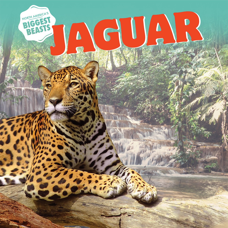 Jaguar (North Americau0027s Biggest Beasts): Elizabeth Morgan: 9781508143055:  Amazon.com: Books