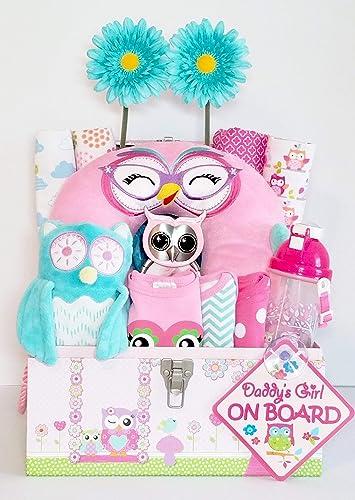 Amazon Com Owl Gift Basket Baby Girl Gift Basket Owl Themed Baby