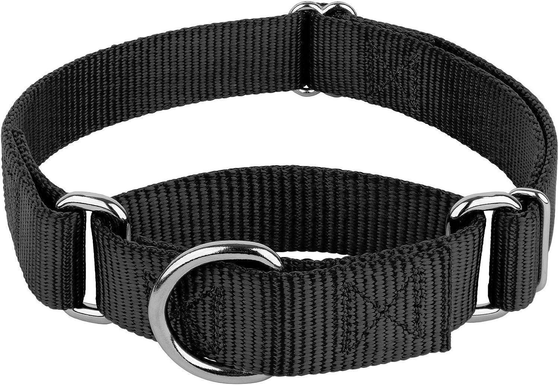 Martingale Heavy Duty Nylon Dog Collar Country Brook Petz