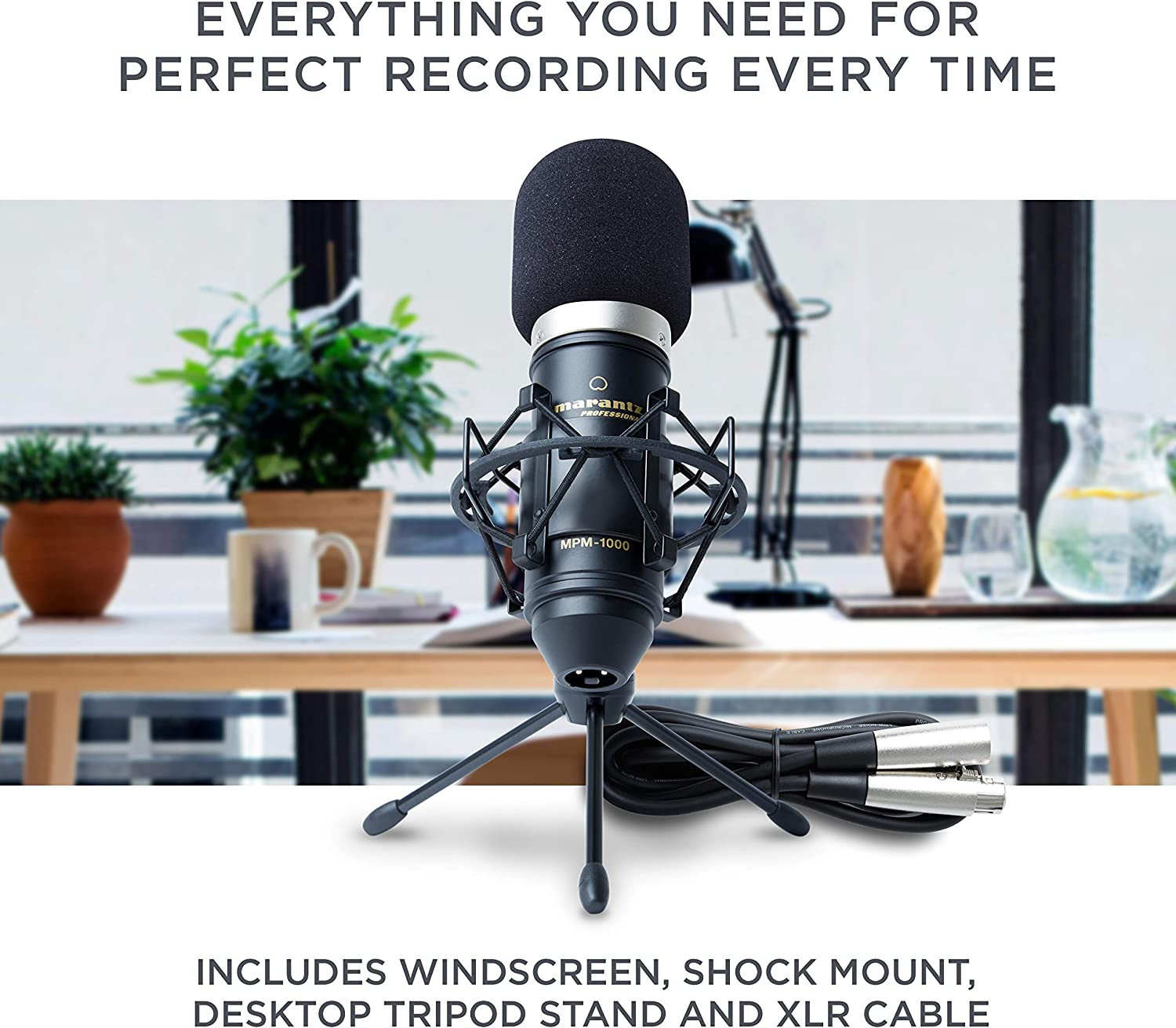 Marantz Pro MPM1000 - Studio Recording Condenser Microphone with Shockmount, Desktop Stand and Cable – Perfect for Podcasting and Voiceover Projects: Musical Instruments
