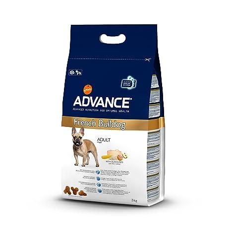 Advance French Bulldog perro Forro