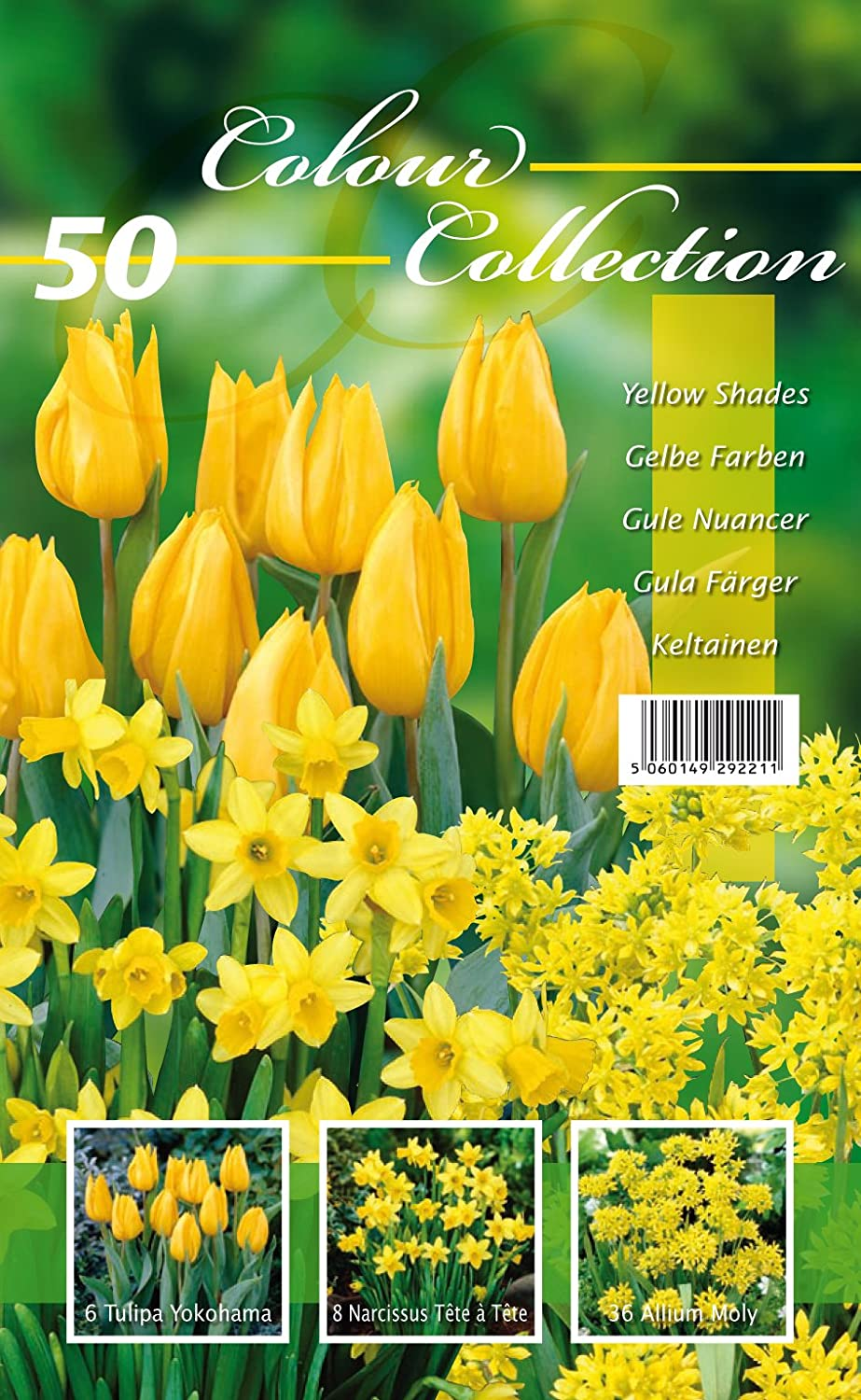 Colour Collection Spring Flower Bulbs Yellow Pack Of 50