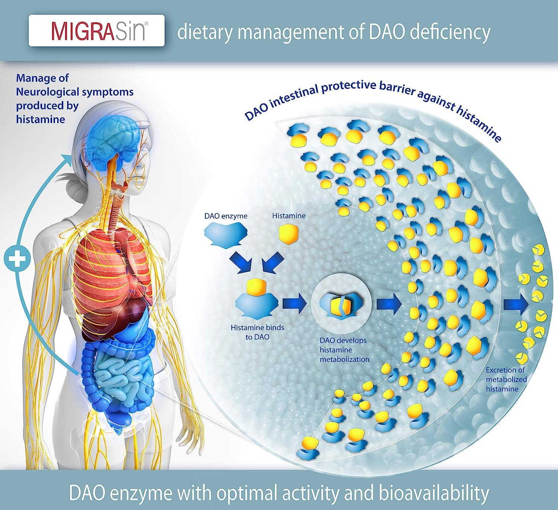 Migrasin – Manejo Dietético de la Migraña causada por déficit de DAO - 60 Cápsulas EFICAPS con Comprimidos Gastrorresistentes – Enzima DAO, Vitamina ...