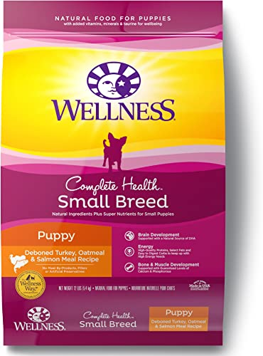 Wellness-Complete-Health-Natural-Dry-Small-Breed-Dog-Food-Small-Breed-Puppy-Turkey,-Salmon-&-Oatmeal
