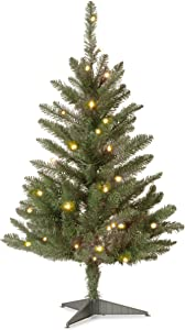 National Tree Company Pre-lit Artificial Mini Christmas Tree | Includes Pre-strung White Lights and Stand | Kingswood Fir - 3 ft
