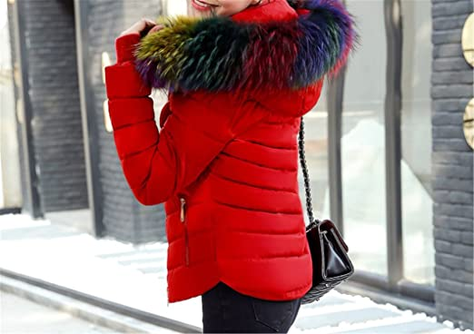 8eb8bf66f738 Amazon.com  Cheryl Bull Trendy Women Hooded Fur collar Down Cotton Coat  Solid color Slim Large size Female Coat  Clothing