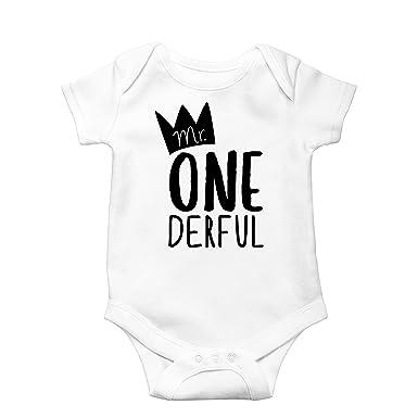 Mr One-Derful Baby Boys 1st Birthday Onesie First Birthday Onesie for boys cf973fd43