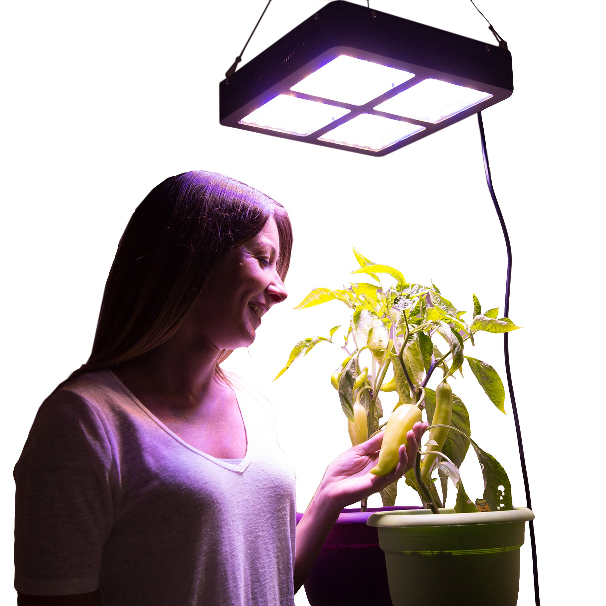 Induxpert 600W LED Light For Plant Growth - Full Spectrum LED for Indoor Plants, Veg, Flowers - Includes Hanging Chain - For Greenhouse, Horticulture, Hydroponics - Powerful Flowering Grower's Light