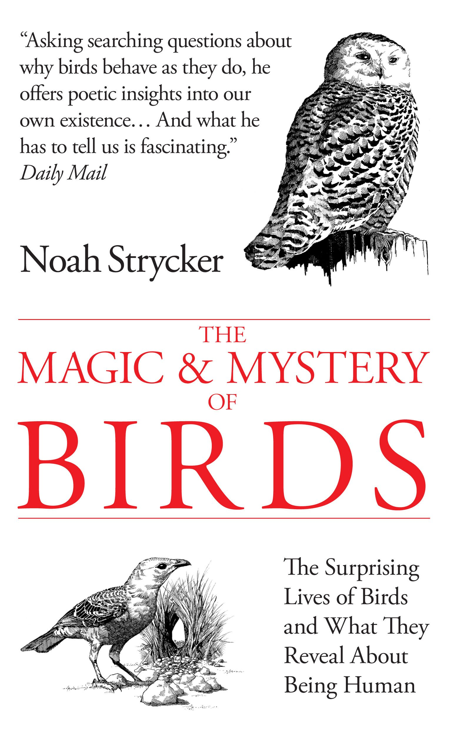 The Magic and Mystery of Birds: The Surprising Lives of Birds and What They Reveal About Being Human PDF