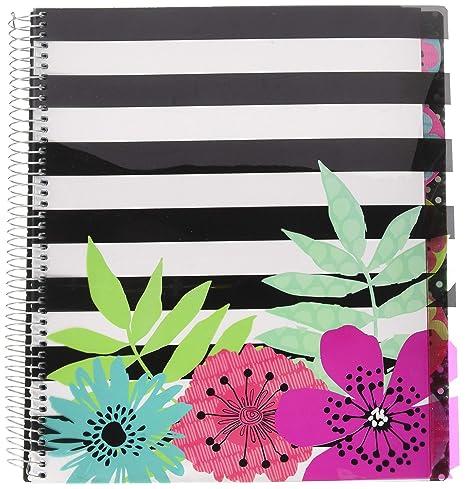 Amazon.com : Studio C Sugarland Five Subject Writing Notebook, 3 ...