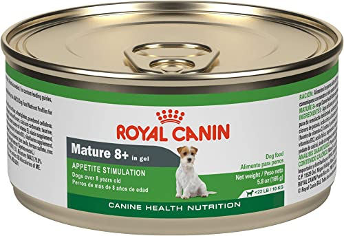 Royal Canin Canine Health Nutrition Mature 8 in Gel Wet Dog Food
