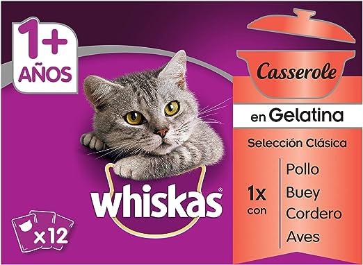 Multipack de 12 bolsitas de 85g Casserole de clásicos para gatos adultos (Pack de 4): Amazon.es: Productos para mascotas