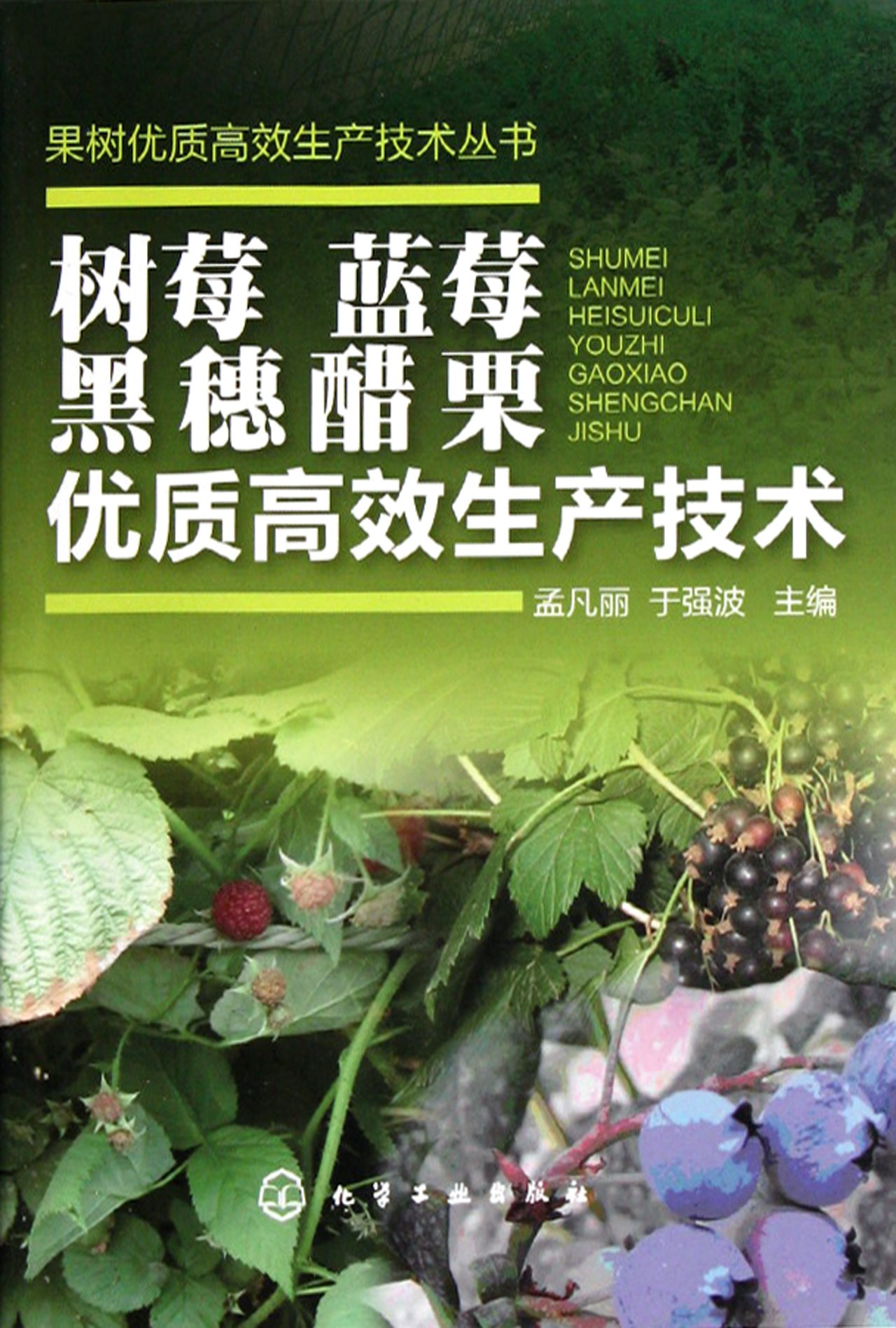 Download High-quality and Efficient Production Techniques of Raspberry, Blueberry, and Black Currant (Series of high-quality and efficient production techniques of fruit trees) (Chinese Edition) ebook