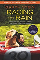 The Art Of Racing In The