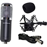 Condenser Microphone, Large Diaphragm Studio Mic Set, Recording Microphone Kit With XLR Cable, Wind Screen, Shock Mount, And Mic (Black)