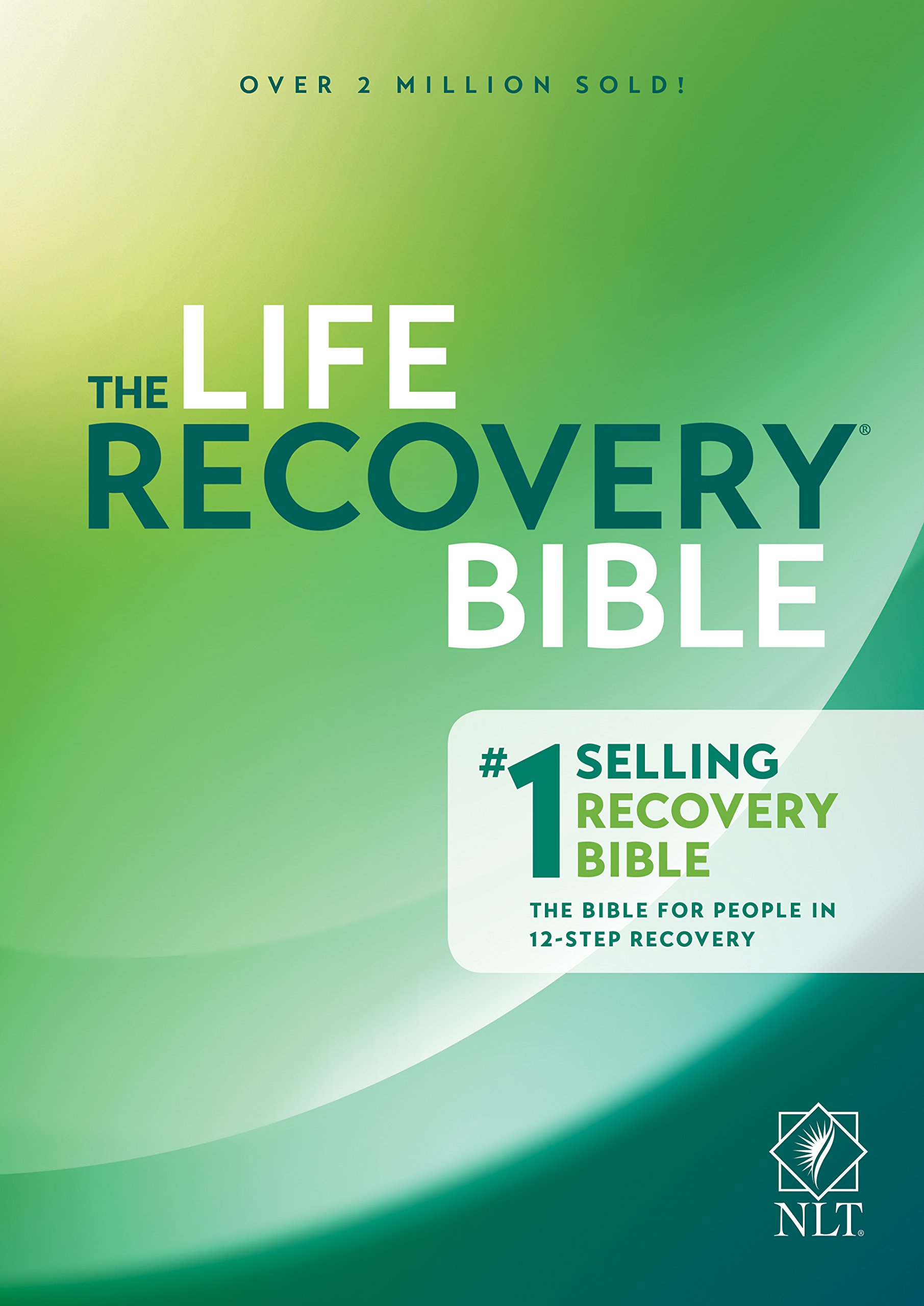 Read Online The Life Recovery Bible NLT pdf