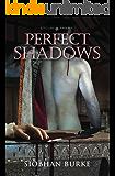 Perfect Shadows