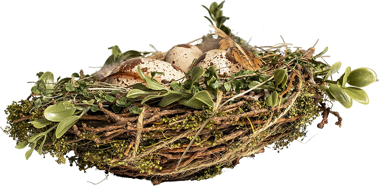 Feathers and Leaves for Spring Easter Wedding Party Decoration Moss 7.5 and 6 Inch Nests Natural Twig Vita Domi Sweet Annie Set of 2 Bird Nests with Eggs