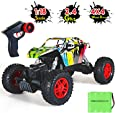 GoStock Remote Control Car, 1:18 Scale RC Car Off-Road All Terrain High Speed 2.4Ghz Radio Electric 4WD Hobby Grade Monster Truck Unique Graffiti Rock Crawler for Boys Girls Gift