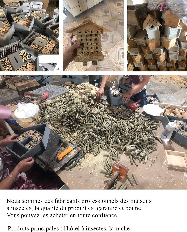 Casa de insectos Naturais, de materiales naturales, caseta de abejas para diferentes insectos voladores, casa de insectos naturales: Amazon.es: Productos para mascotas