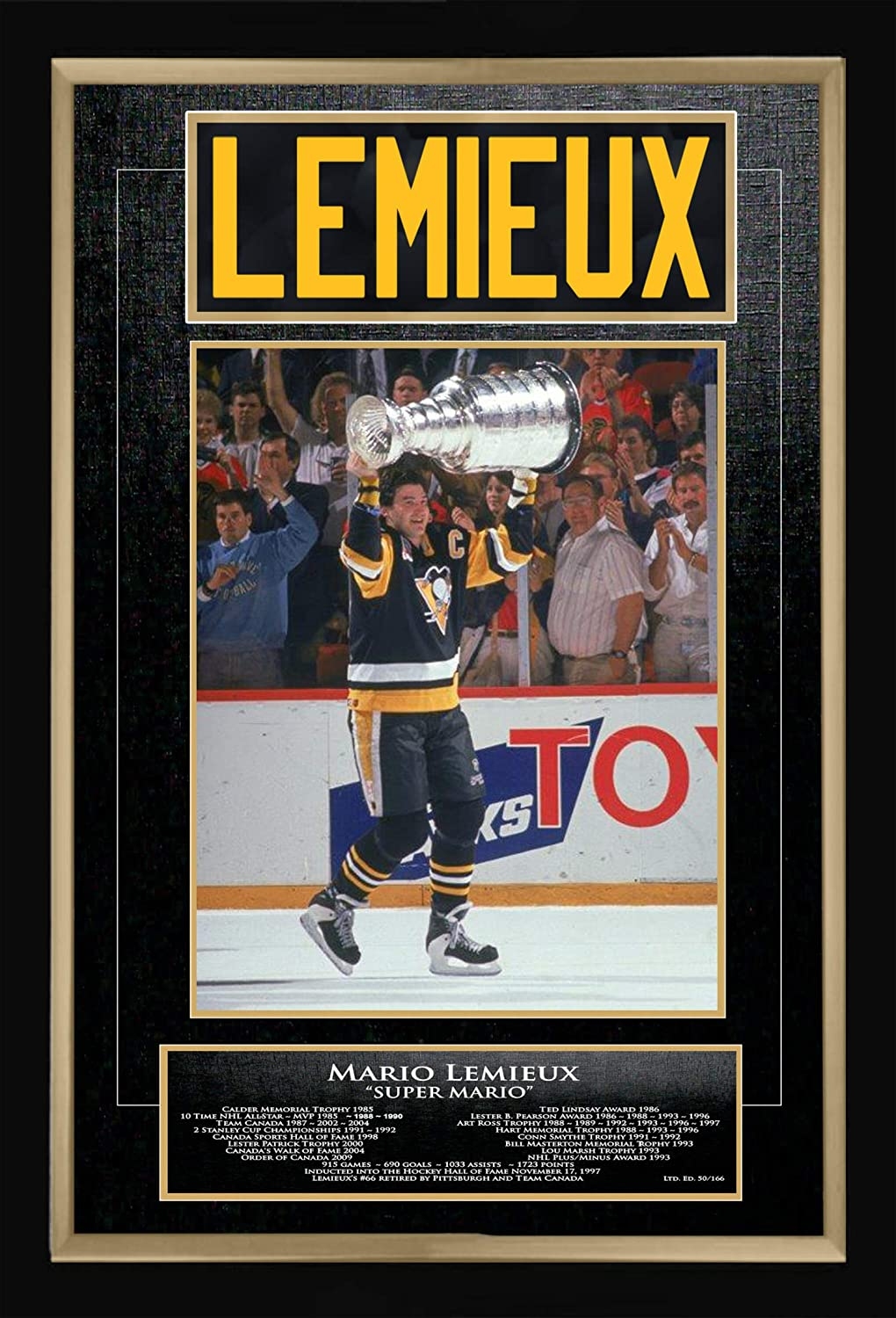 pick up c74dd df12b Mario Lemieux Career Collectible Namebar Ltd Ed of 166 ...