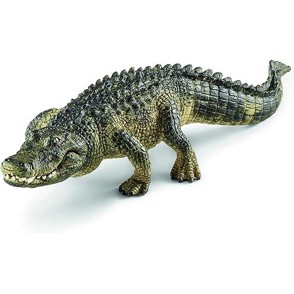 Amazon.com: Schleich cocodrilo: Schleich: Toys & Games