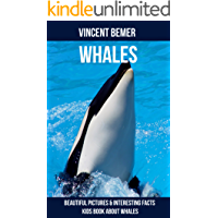 Whales: Beautiful Pictures & Interesting Facts Kids Book About Whales