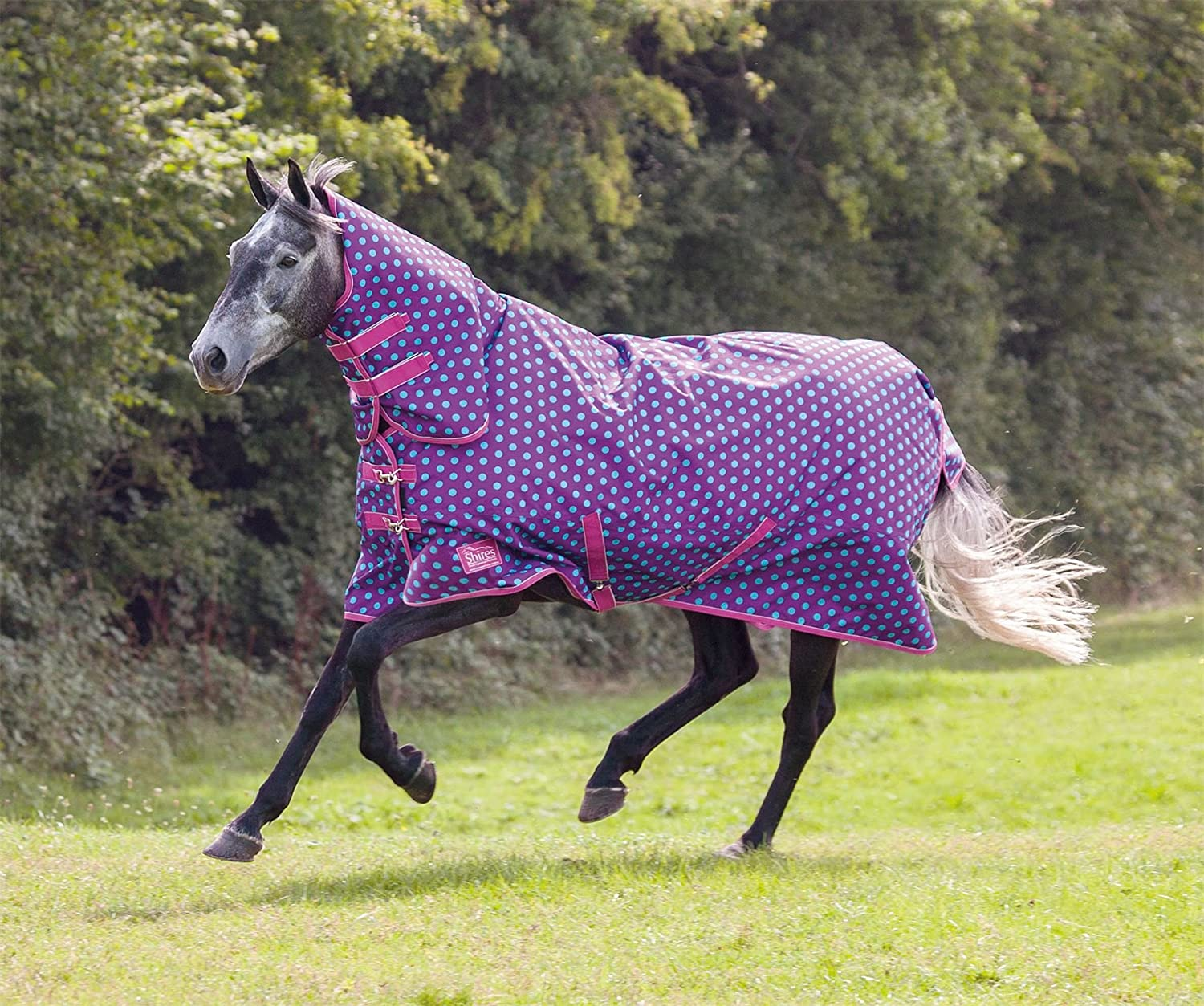 200g Medium Weight Turnout Rug with Full Combo Attached Neck Cover ALL SIZES