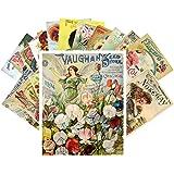 Carte Postale 24pcs Flowers Vintage Seed Pockets Gardens Pansies