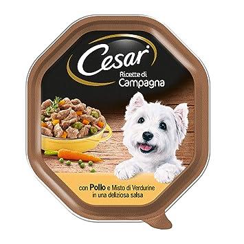 Cesar Recetas de Campo con Pollo y Mezcla de verdurine en una Hermosa Salsa - Paquete de 14 Unidades: Amazon.es: Productos para mascotas