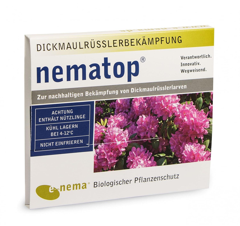 HM Nematoden - Nützling gegen den Dickmaulrüßler - ca. 6 Mio. e~nema