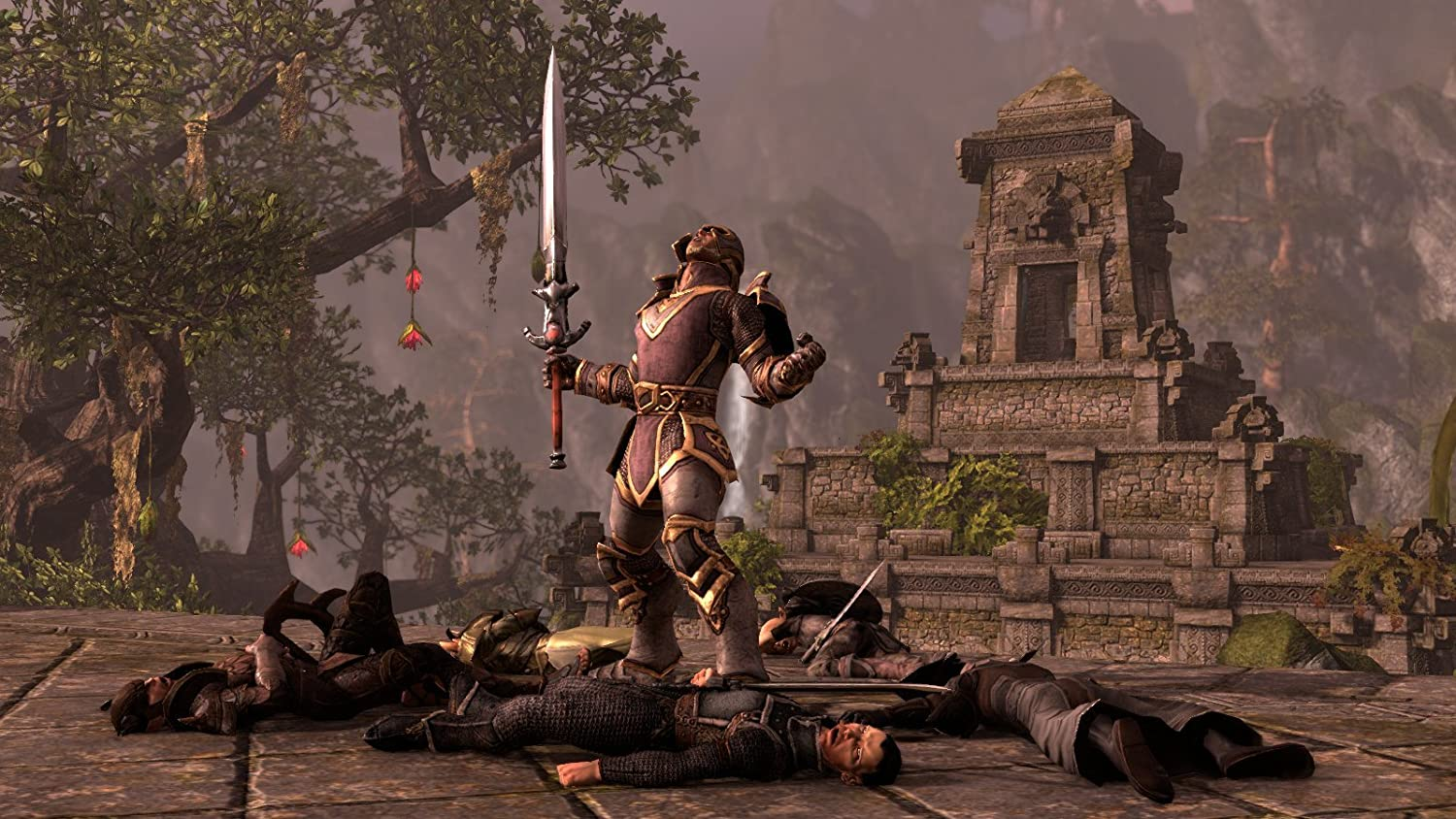 Amazon com: The Elder Scrolls Online - PC/Mac: Video Games