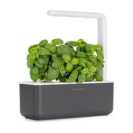 click grow smart garden 3 indoor gardening kit includes basil capsules - Indoor Garden Kit