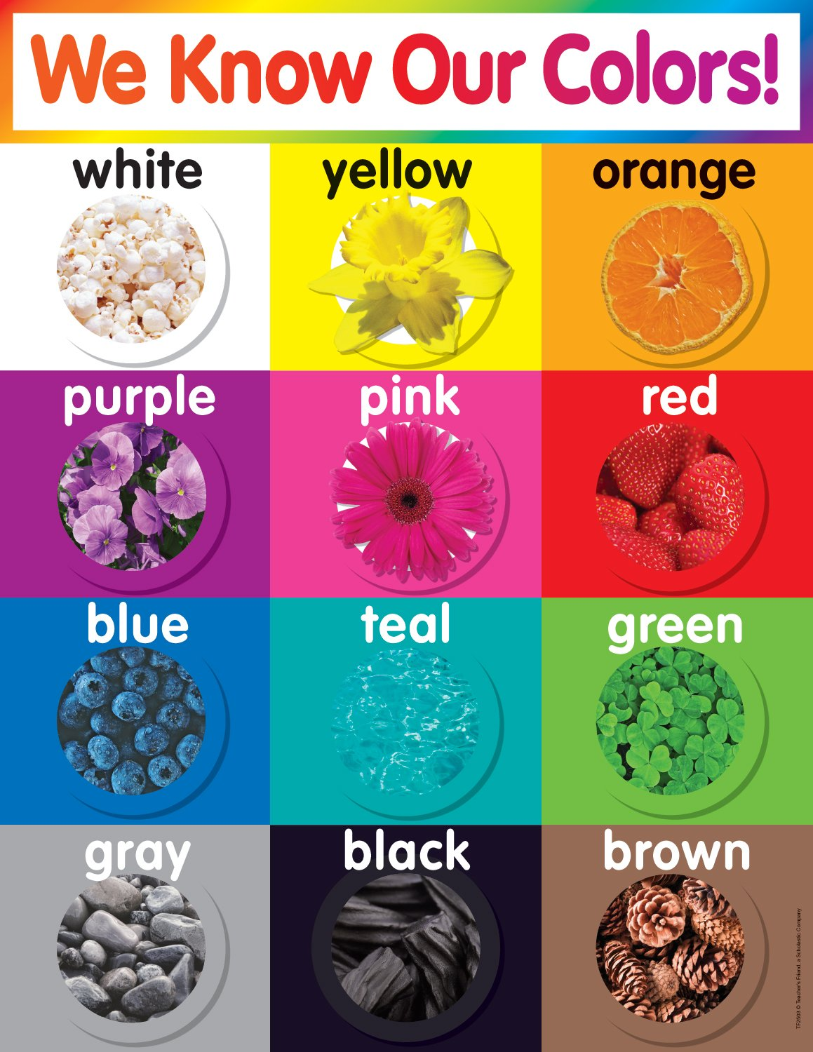 Amazon scholastic tf2503 colors chart teachers friend amazon scholastic tf2503 colors chart teachers friend office products nvjuhfo Gallery