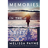 Memories in the Drift: A Novel book cover