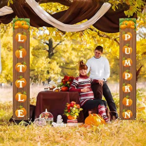Welcome Little Pumpkin Banner,Rustic Fall Autumn Pumpkin Baby Shower&Birthday Party&Gender Reveal Decoration Backdrop for Home Farmhouse