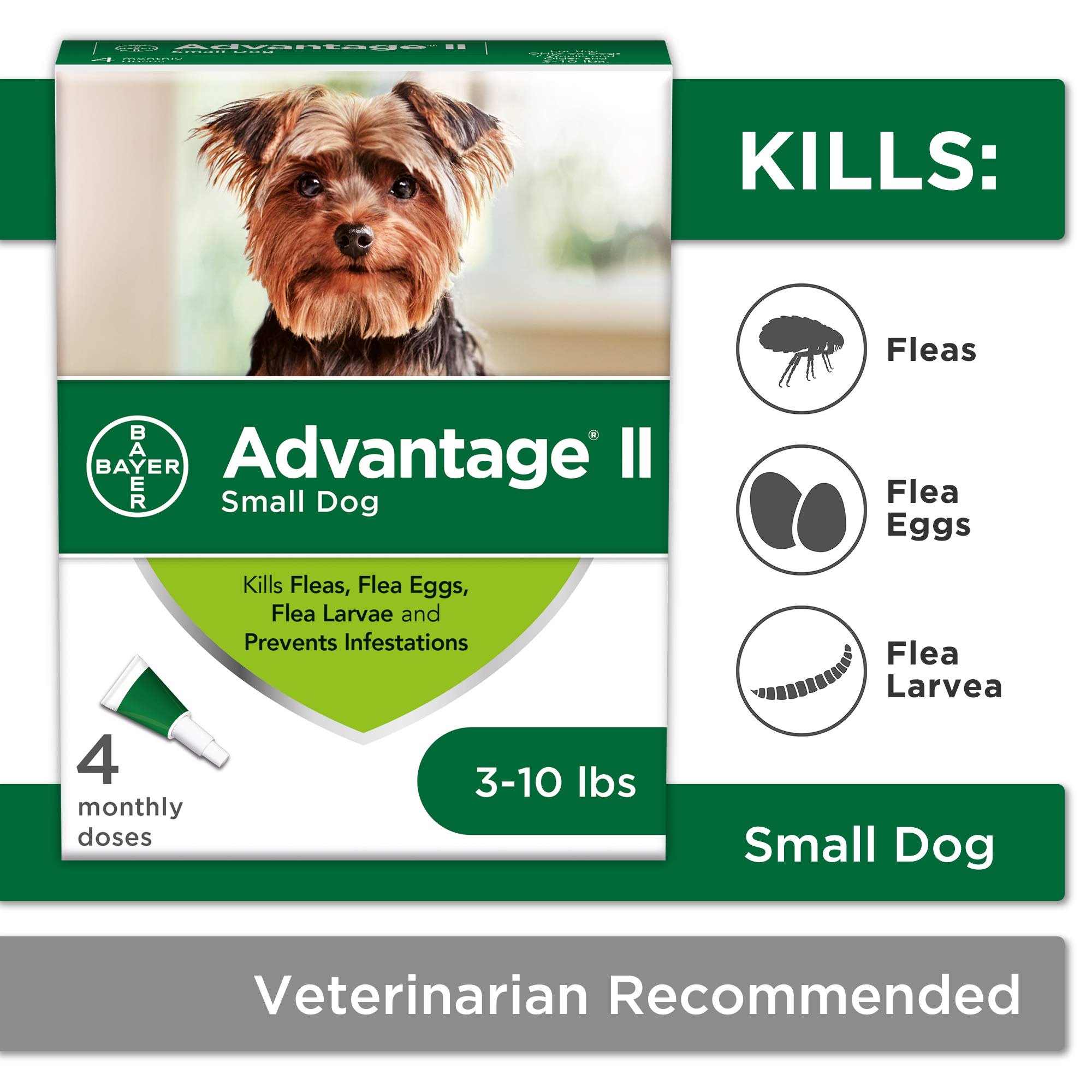 Flea and Lice Treatment for Dogs, 3-10 lb, 4 doses, Advantage II by Bayer Animal Health